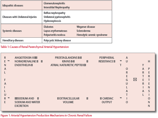 Diagnosis Of Arterial Hypertension In Chronic Renal Failure